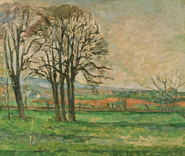 Painting -  The Bare Trees At Jas De Bouffan  by Paul Cezanne