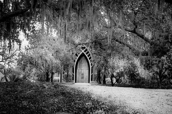 Gainesville Photograph -  The Baughman Center by Louis Ferreira