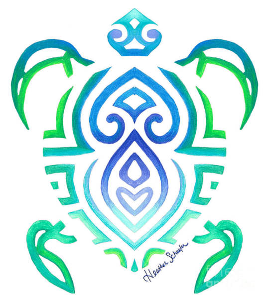 Drawing -  Tribal Turtle by Heather Schaefer