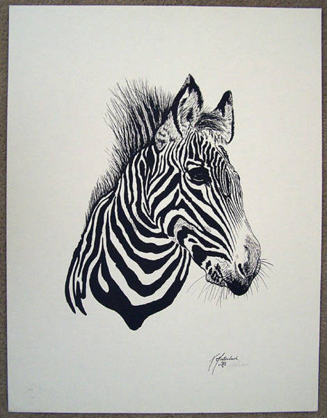 Wall Art - Painting -  Zebra by Ken Hollerbach