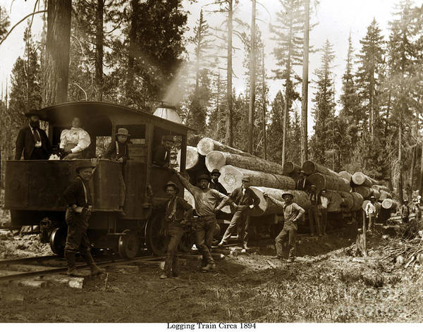 Photograph - 0-4-2 Logging Train 1894 by California Views Archives Mr Pat Hathaway Archives