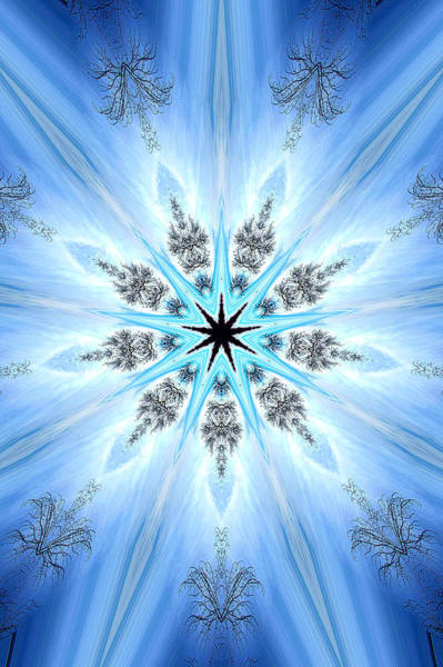Kaleidoscopes Photograph - 008 by Phil Koch