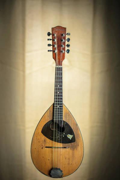 Photograph - 01.1845 Framus Mandolin by M K Miller