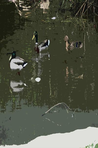 Digital Art - 0606 City Park Lagoon by Garland Oldham