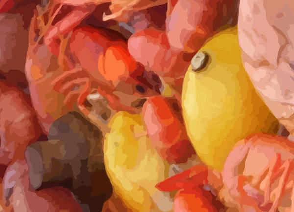 Photograph - 06232015 Mushroom Mud Bugs Lemons by Garland Oldham