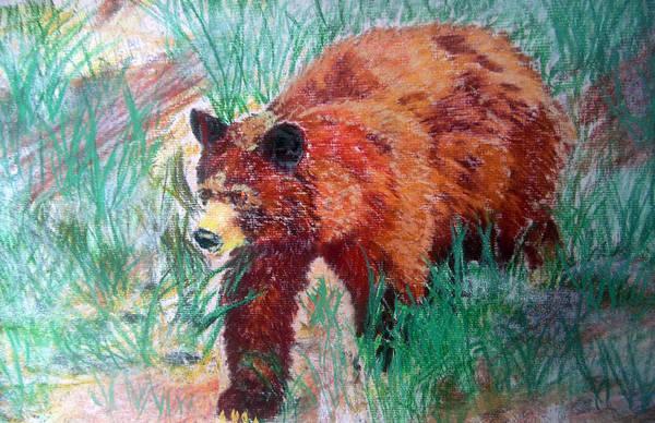 Painting - 073015 Alaska Black Bear by Garland Oldham