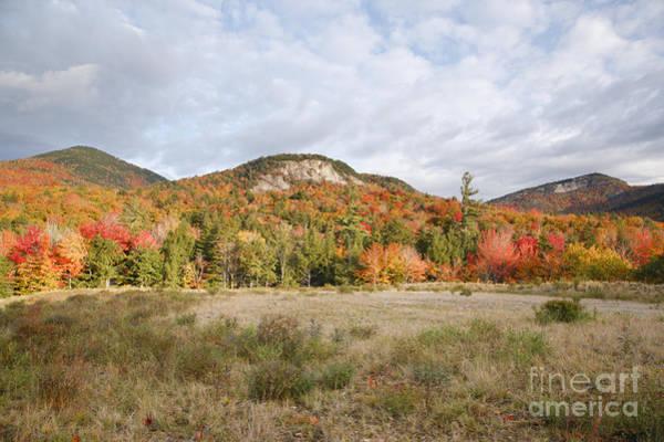 Photograph -  Kancamagus Highway - White Mountains New Hampshire Usa by Erin Paul Donovan