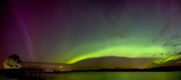 Photograph -   Northern Lights by Gavin Macrae