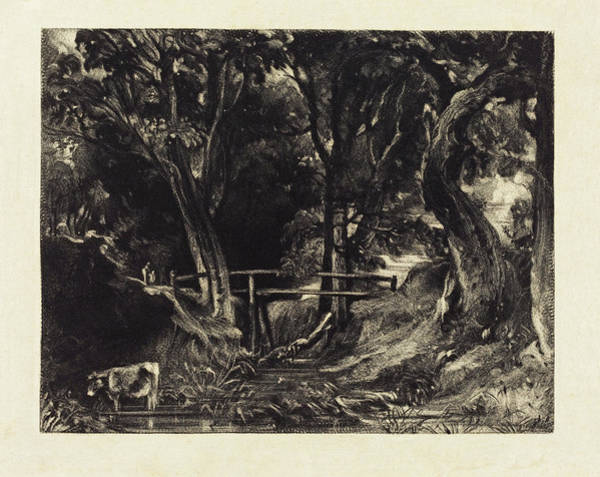 Painting - A Dell, Helmingham Park, Suffolk   by David Lucas after John Constable