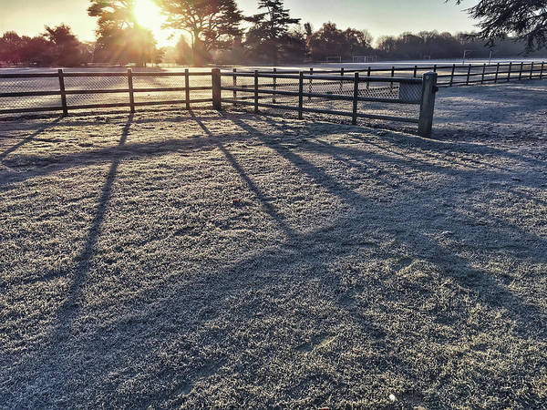 Bitter Photograph - A Frosty Paddock by Tom Gowanlock
