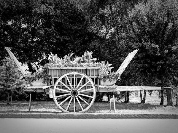 Digital Art - A Little Flower Wagon - Normandy, France by Joseph Hendrix