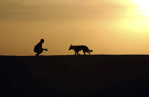 Iraqi Photograph - A Military Working Dog And His Handler by Stocktrek Images