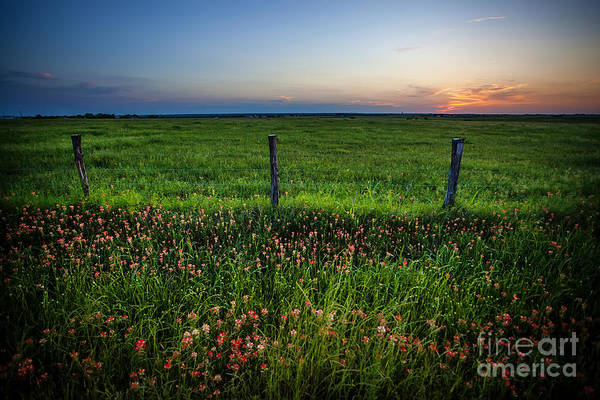 Wall Art - Photograph - A Rural Evening In Texas by Katya Horner