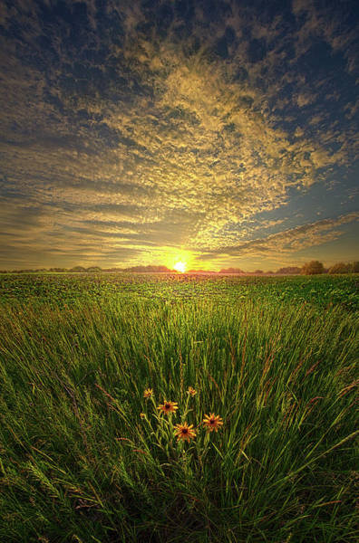 Wall Art - Photograph - A Time Of Gifts by Phil Koch