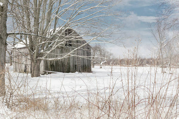 Photograph - A Winters Day by Bill Wakeley