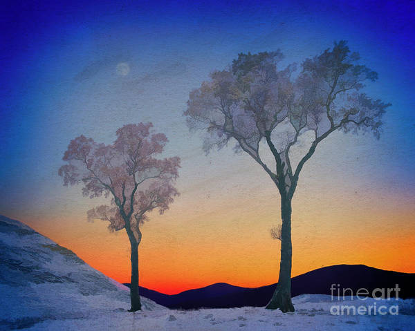 Digital Art - A Winter's Tale by Edmund Nagele