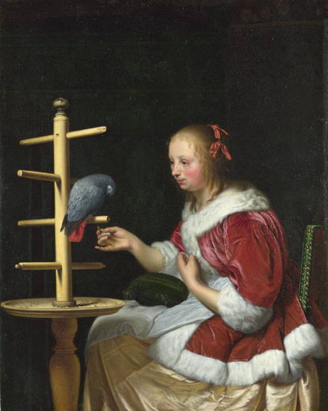 Wall Art - Painting - A Woman In A Red Jacket Feeding A Parrot by Frans Van Mieris The Elder
