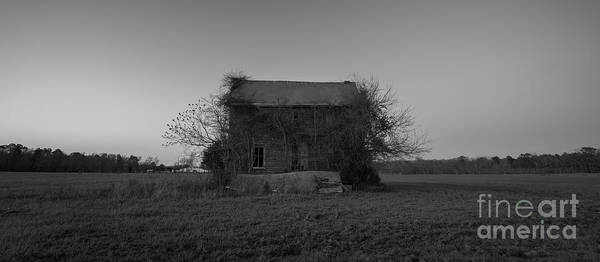 Photograph - Abandoned Farm House Near Assateague  by Michael Ver Sprill