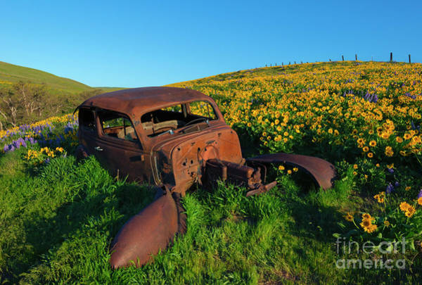 Junker Wall Art - Photograph - Abandoned by Mike Dawson