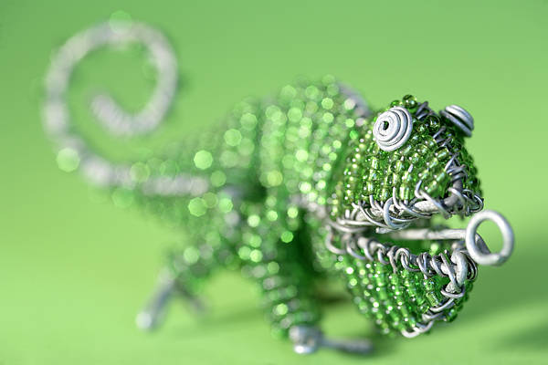 Beading Photograph - African Wire Chameleon by Neil Overy