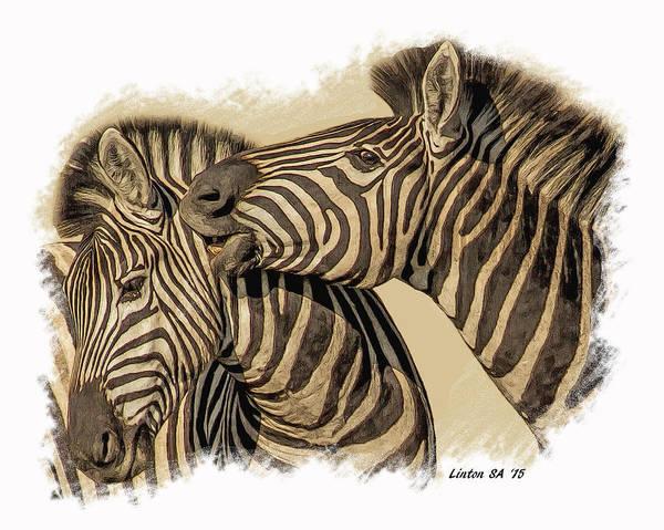 Digital Art - African Zebras by Larry Linton