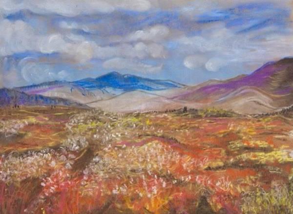 Pastel - Alaskan Meadow by Betsy Carlson Cross