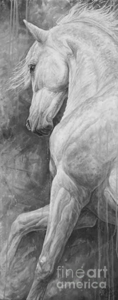 White Horse Wall Art - Painting - Allegro by Silvana Gabudean Dobre