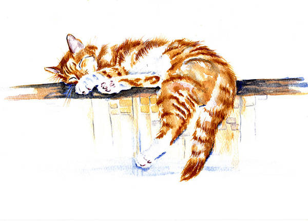 Wall Art - Painting - Alley Cat by Debra Hall