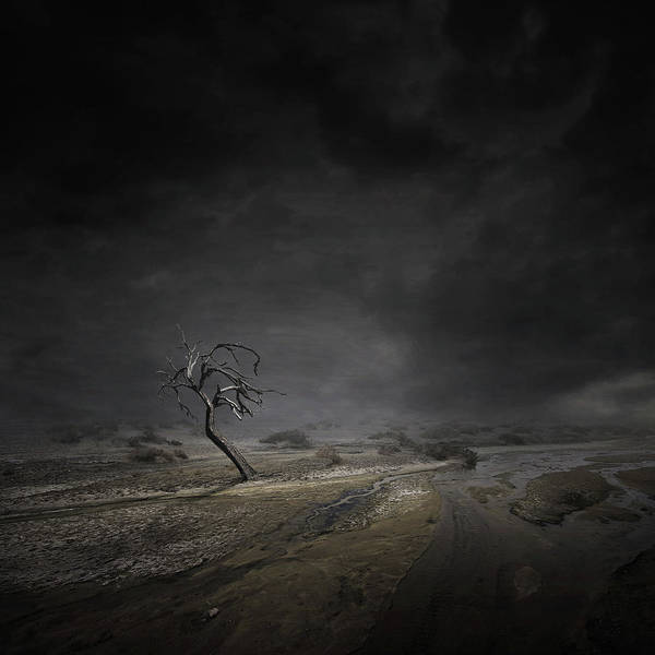 Wall Art - Digital Art - Alone by Zoltan Toth