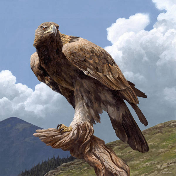 Painting - Alpine Hunter by Peter Eades