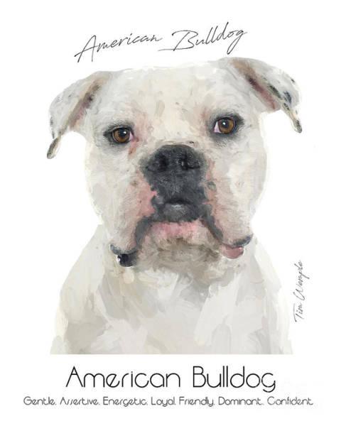 Digital Art - American Bulldog Poster by Tim Wemple