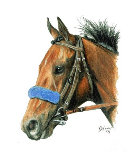 Wall Art - Painting - American Pharoah by Pat DeLong