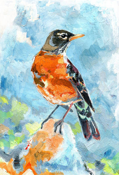 Painting - American Robin by Abby McBride