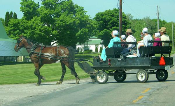 Photograph - Amish Convertible Buggy by Tina M Wenger