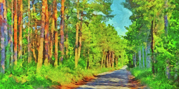 Digital Art - An Old Logging Road In Sleeping Bear Dunes National Lakeshore by Digital Photographic Arts