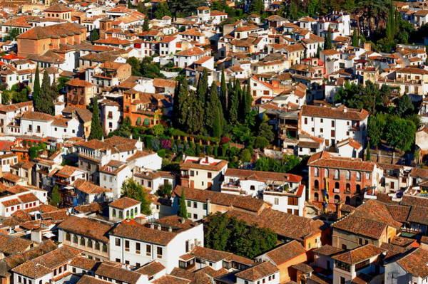 Photograph - Andalusia - Granada, Spain by Anthony Dezenzio