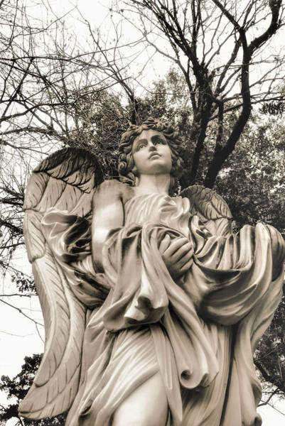 Photograph - Angel In The Fall by Nathan Little