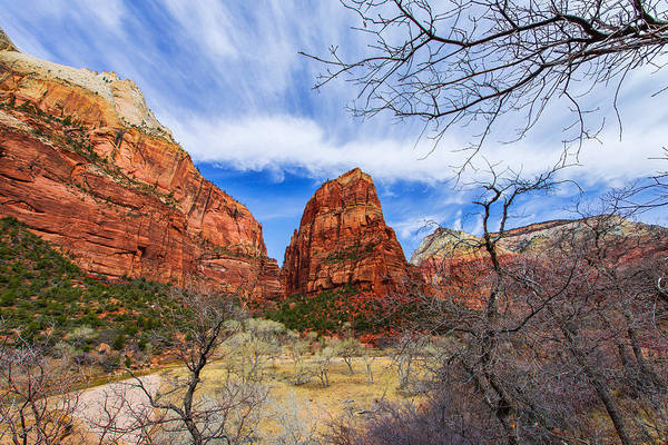 Erosion Wall Art - Photograph - Angels Landing by Chad Dutson