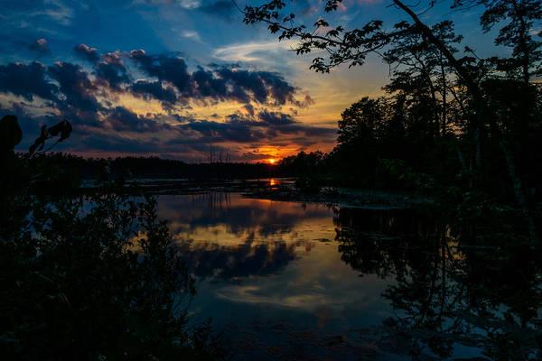 Photograph - Soulful Sunset Pine Lands Nj by Louis Dallara