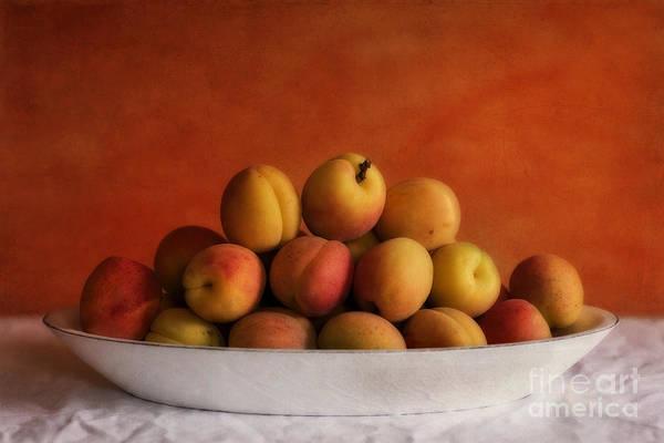 Delicious Photograph - Apricot Delight by Priska Wettstein