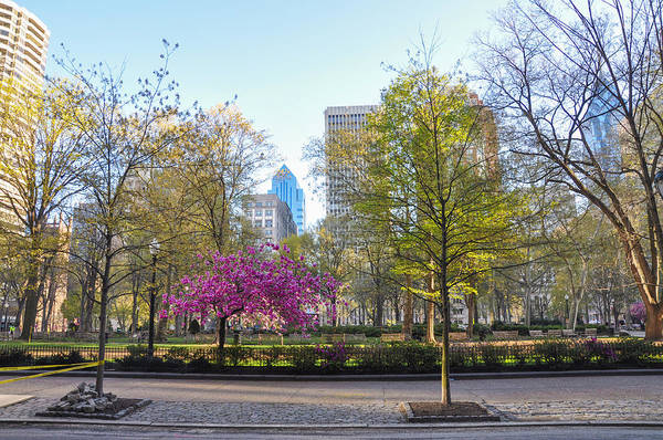 Rittenhouse Square Wall Art - Photograph - April In Rittenhouse Square by Bill Cannon