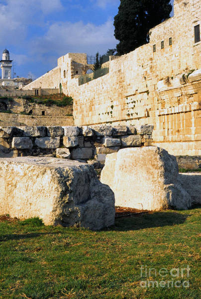 Jewish Homeland Photograph - Archaeological Garden Southern Temple Mount by Thomas R Fletcher