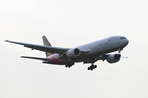 Wall Art - Photograph - Asiana Airlines Boeing 777 by David Pyatt