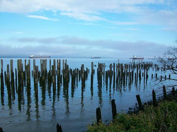 Photograph - Astoria Ships II by Quin Sweetman