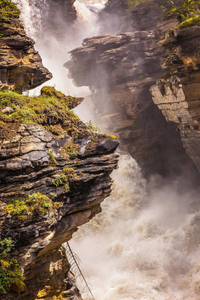 Photograph - Athabasca Falls by Mark Mille