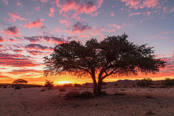 Wall Art - Photograph - Aus - Namibia by Joana Kruse