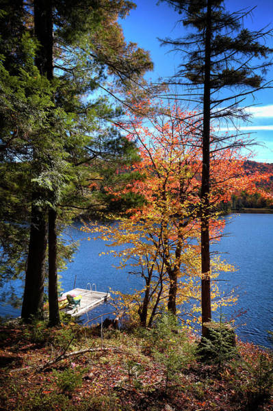 Photograph - Autumn At The Dock by David Patterson