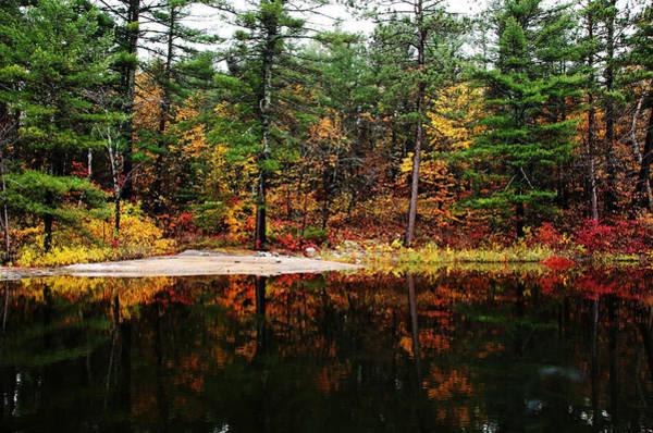 Wall Art - Photograph - Autumn Colors by Debbie Oppermann
