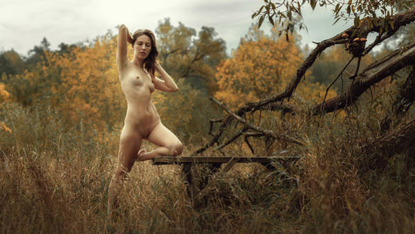 Photograph - Autumn by Dmitry Laudin