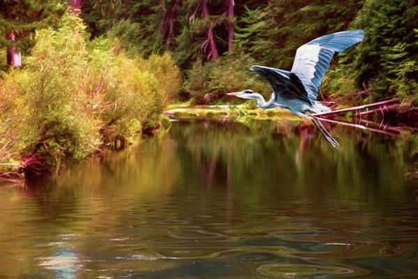 Rogue River Wall Art - Photograph - Autumn Flight by Diane Schuster
